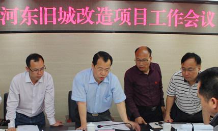 莫永东副主席调研河东旧城改造项目